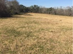 Image for 11.5 acres only a few minutes from downtown La Grange